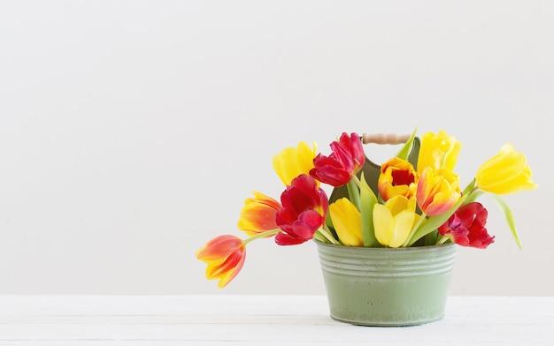 Tulipani rossi e gialli nel secchio su sfondo bianco
