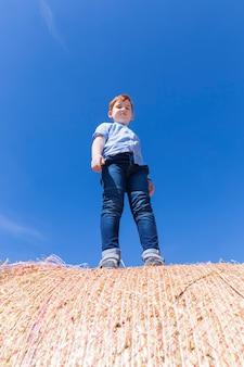 Un ragazzo dai capelli rossi sta su una pila di paglia dorata in un campo un ragazzo di 67 anni su una pila di paglia di grano spinoso un bambino piccolo ragazzo carino