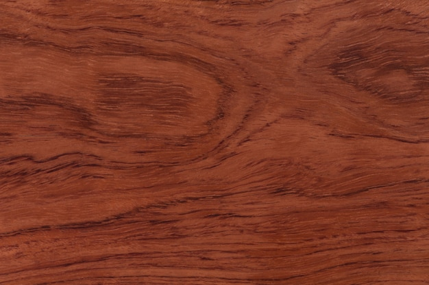 Fondo o struttura della sequoia. ciao foto ad alta risoluzione.