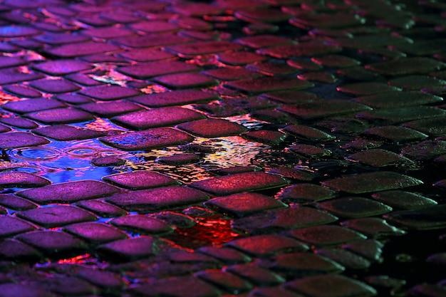 Il riflesso delle luci pubblicitarie sui sassi della strada sotto la pioggia