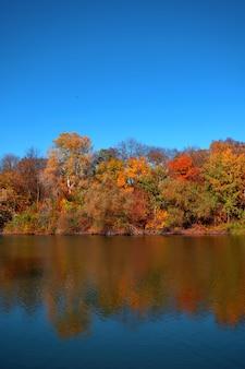 Riflessione di un bellissimo bosco autunnale nel fiume, sullo sfondo di un cielo azzurro senza nuvole