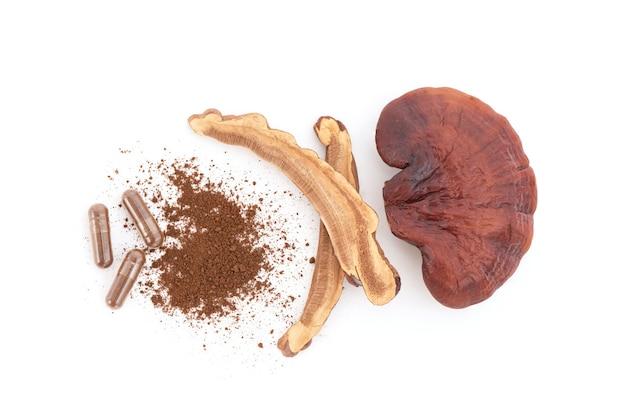 Reishi o fungo lingzhi isolato su sfondo bianco.vista dall'alto,disposizione piatta.