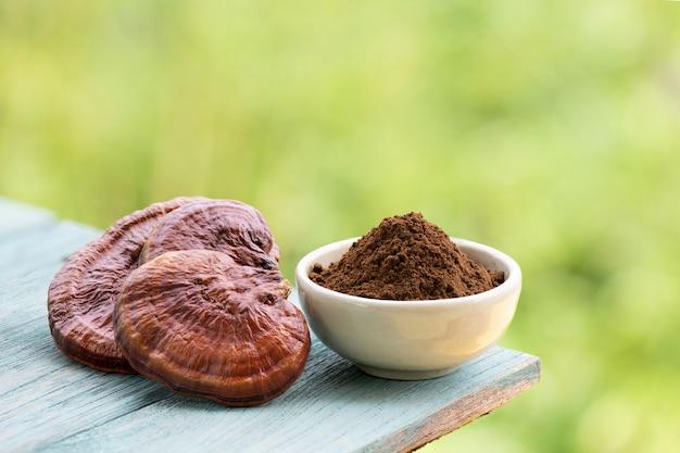 Reishi o fungo lingzhi e polvere su sfondo naturale.