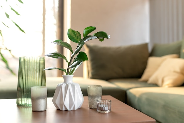 Momento di relax a casa confortevole con candele e vaso con zamioculcas al tavolo di legno. divano verde con cuscini gialli. raggi di sole.