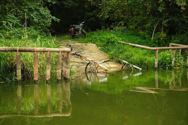 Resti di un vecchio ponte sulla riva del fiume, paesaggio forestale estivo.