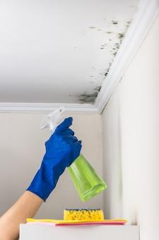 Rimozione della muffa dall'abitazione con sostanza detergente