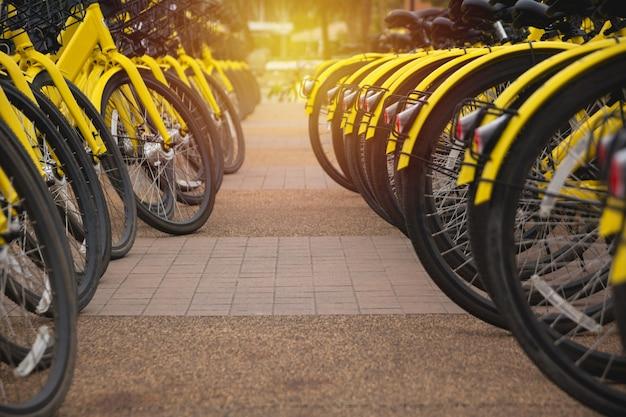 Noleggio biciclette in città. bicicletta pubblica in bicicletta condivisa.