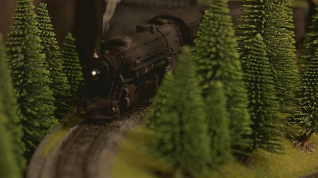 Lokomotive a vapore retrò tra gli alberi.