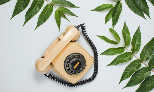 Sfondo stile retrò. telefono rotativo tra foglie verdi tropicali su sfondo bianco.