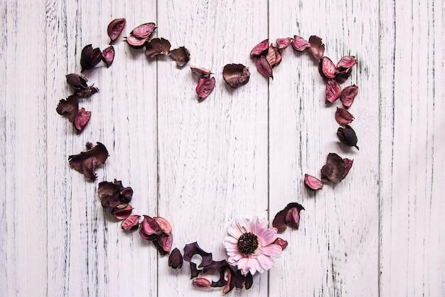 Fondo del telaio del fiore essiccato pavimento di legno verniciato bianco d'annata retrò