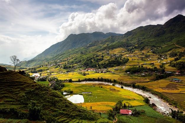 Campi di riso a nord-ovest del vietnam