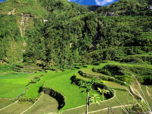 Le terrazze di riso a bangaan filippine