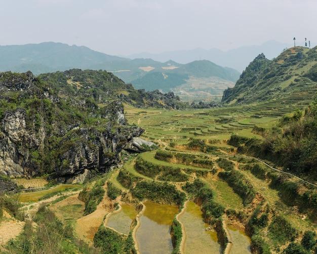 Terrazze e colline di riso a sapa vietnam