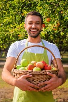 Ricco raccolto. felice giovane giardiniere che tiene cesto con mele e sorride mentre si trova in giardino