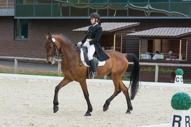 Cavaliere su una competizione di cavalli