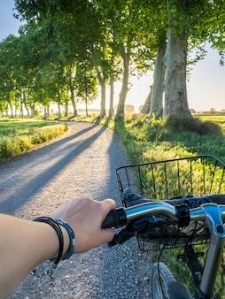In sella a una bicicletta durante un tramonto in un percorso di alberi