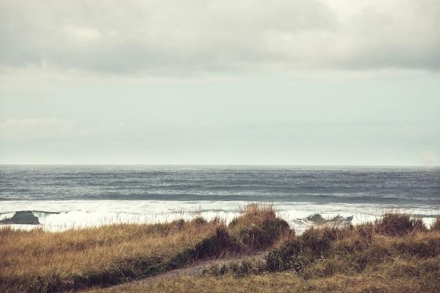 Rigorosa costa oceanica del pacifico settentrionale, pacific northwest, filtro instagram.