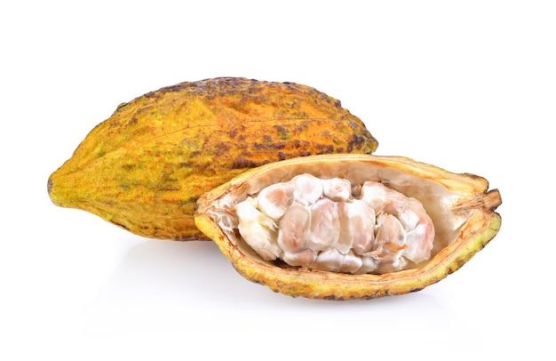 Frutti di cacao maturi isolati su sfondo bianco