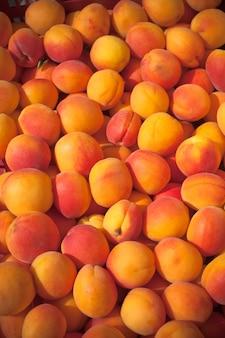 Albicocche fresche mature in un mercato degli agricoltori