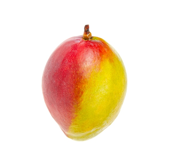 Mango rosso-verde maturo, succoso e dolce. frutti esotici isolati su bianco.