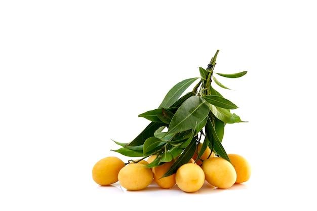 Prugna mariana gialla dolce matura con foglie isolate, vista frontale
