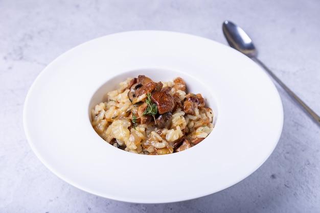 Risotto ai funghi porcini. piatto italiano tradizionale. primo piano, orientamento orizzontale.