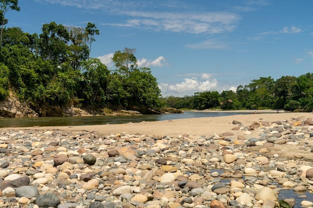 Un fiume nel bacino amazzonico, ecuador