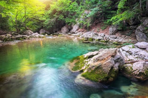 Fiume nel profondo della montagna in estate. flusso d'acqua nella foresta. composizione della natura