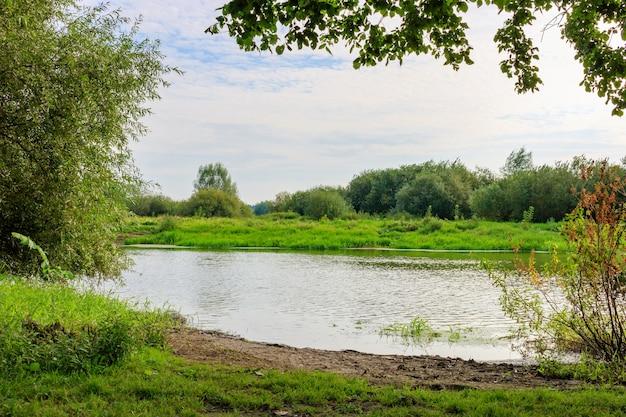 Riva del fiume con erba verde e alberi con cespugli su uno sfondo di superficie dell'acqua nella soleggiata mattina di autunno. paesaggio fluviale