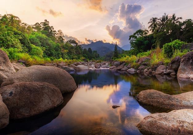 Pietra di fiume e albero con cielo e nuvole colorate. visualizza l'acqua, l'albero del fiume, il fiume di pietra e la foglia dell'albero nella foresta