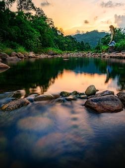 Pietra di fiume e albero con cielo e nuvola colorati, vista albero fiume acqua, fiume di pietra e foglia di albero nella foresta