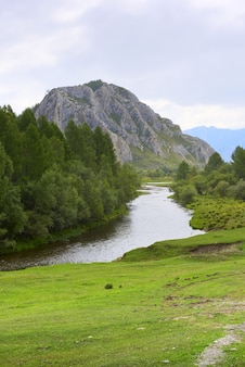 Il letto del fiume sullo sfondo di un'alta roccia sotto un cielo nuvoloso blu siberia russia