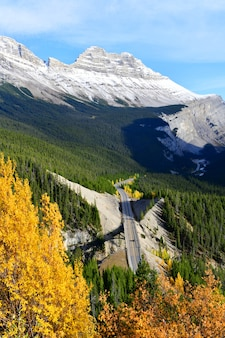 La strada 93 icefield parkway in autunno jasper national park