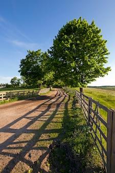 La strada in una fattoria - strada non asfaltata che conduce in una fattoria. aree rurali.