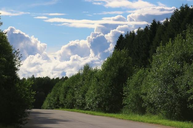 Strada nel paesaggio nuvoloso del campo
