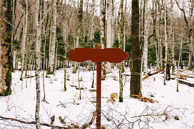 Segnale stradale con un campo vuoto si trova in un bosco di conifere decidue tra la neve