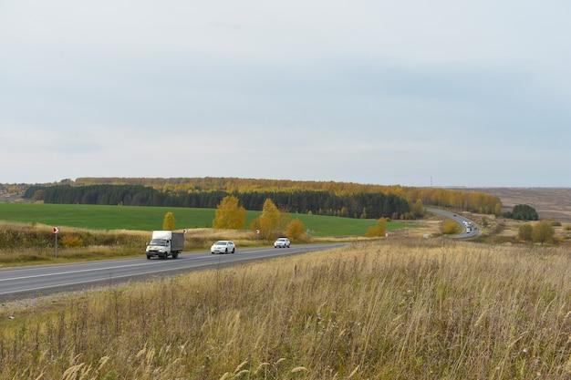 Strada attraverso la foresta e il campo in autunno
