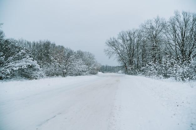 Una strada in una foresta innevata d'inverno