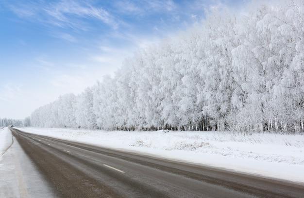 Strada in inverno