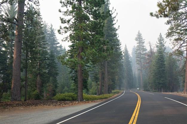 Strada nel parco nazionale di yellowstone nel wyoming, usa
