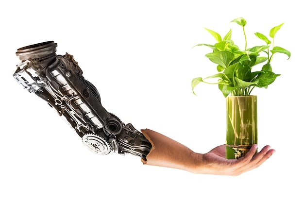 Tenuta della mano del robot sulla pianta d'appartamento nel vaso di bambù isolato su fondo bianco