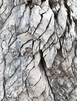 Priorità bassa di struttura della roccia