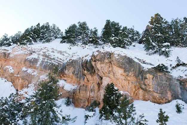 Rocce ricoperte di neve, su cui cresce la foresta