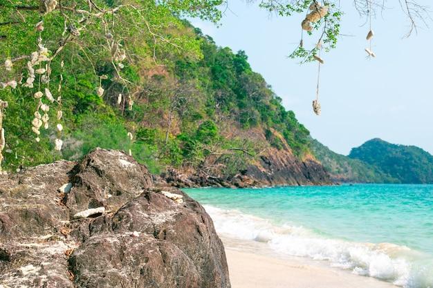 Costa rocciosa del mare, paesaggio tropicale