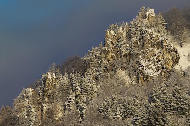 Lato della collina rocciosa con alberi di pino che crescono su di esso coperto di neve