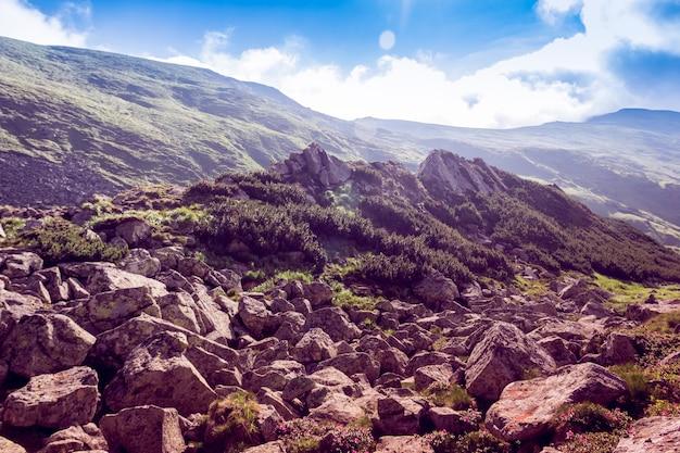 Cima di montagna rocciosa tra le montagne verdi