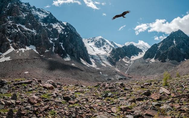 Valle di montagna rocciosa con un uccello in volo. valle dell'altopiano tra la catena montuosa innevata e il picco appuntito sotto il cielo blu. atmosferico scenario di montagna.