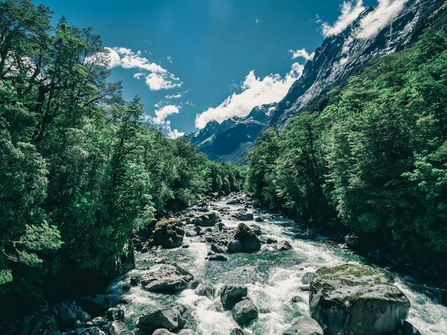 Paesaggio del fiume roccioso nella foresta pluviale, nuova zelanda