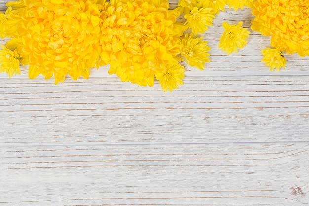 Composizione di cornice floreale romantica. fiori gialli della margherita dei crisantemi su fondo di legno bianco. vista dall'alto con spazio di copia