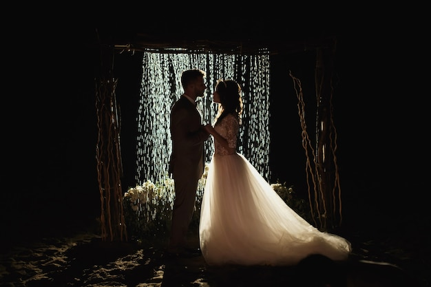Sposi novelli romantici delle coppie amorose, matrimonio sullo sfondo del cielo notturno e della pioggia. gli sposi stanno sullo sfondo dell'arco con la pioggia.